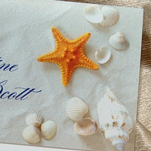 Sand and Shell Photo Thank You Card