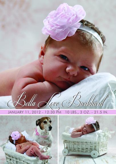 Baby Announcement for Bella Burkhard