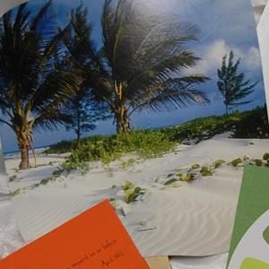 Orange and Green Beach Wedding Reception