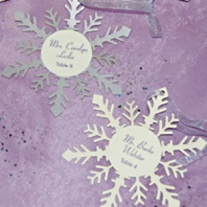 Purple Snowflake Reception Items